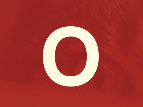 Obtain